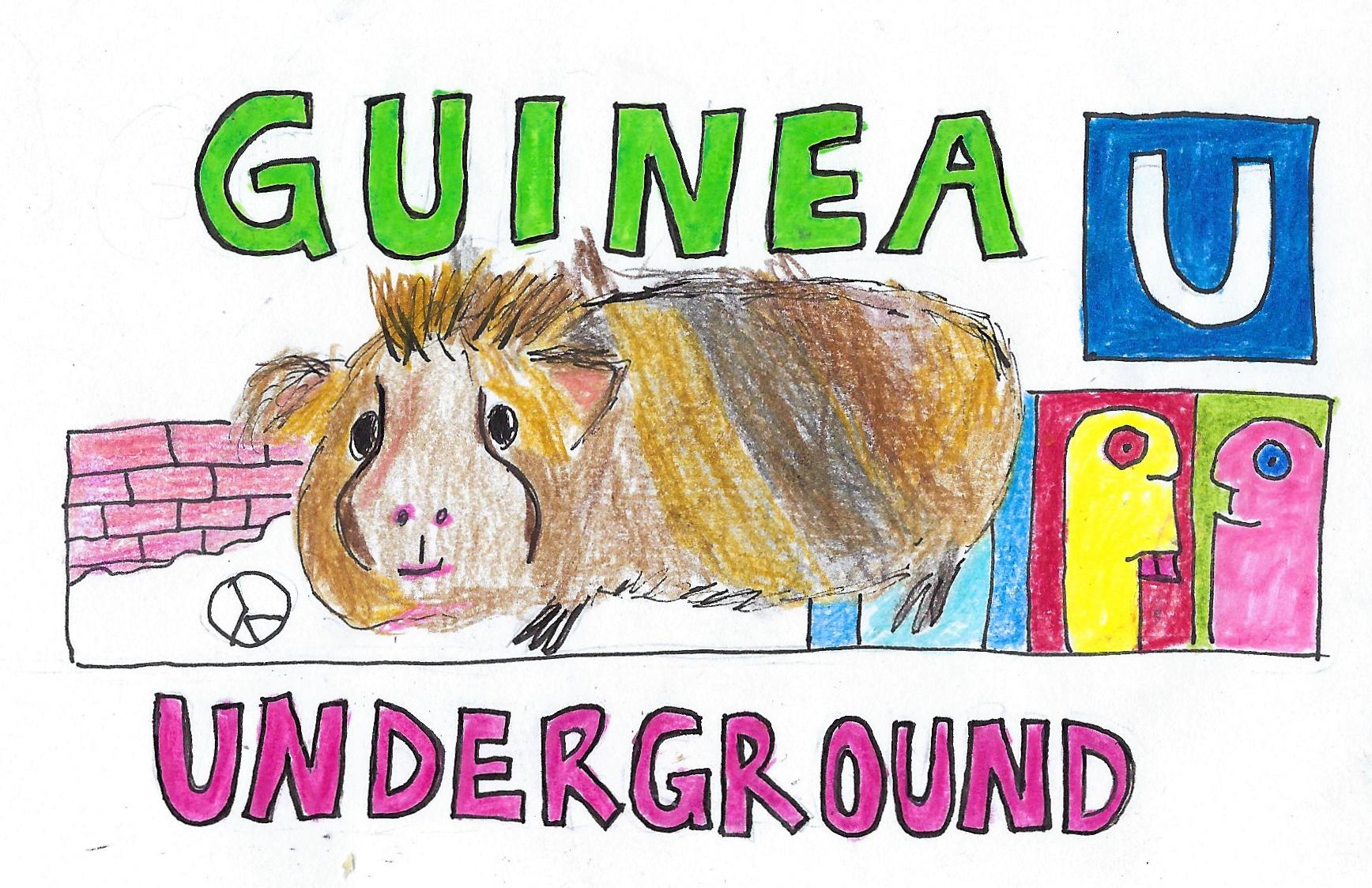 Ein Meerschweinchen neben einem U-Bahn Einfang